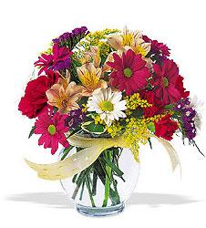 Hakkari çiçek satışı  cam yada mika vazo içerisinde karisik kir çiçekleri