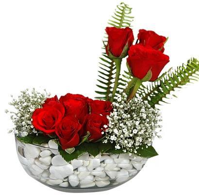cam içerisinde 9 adet kirmizi gül  Hakkari internetten çiçek siparişi