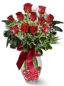 9 adet gül  Hakkari çiçek siparişi sitesi  kirmizi gül