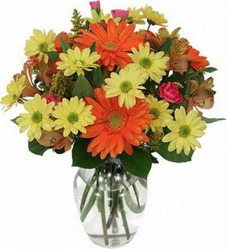 Hakkari anneler günü çiçek yolla  vazo içerisinde karışık mevsim çiçekleri