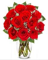 12 adet vazoda kıpkırmızı gül  Hakkari online çiçek gönderme sipariş