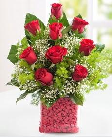 Cam içerisinde 9 adet kırmızı gül  Hakkari çiçek siparişi sitesi