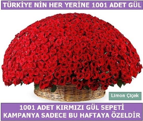1001 Adet kırmızı gül Bu haftaya özel  Hakkari çiçek yolla , çiçek gönder , çiçekçi