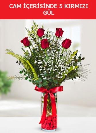 Cam içerisinde 5 adet kırmızı gül  Hakkari çiçekçi mağazası