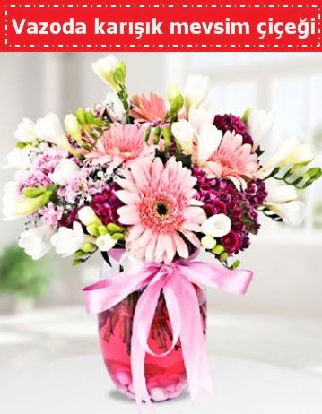 Vazoda karışık mevsim çiçeği  Hakkari çiçek satışı