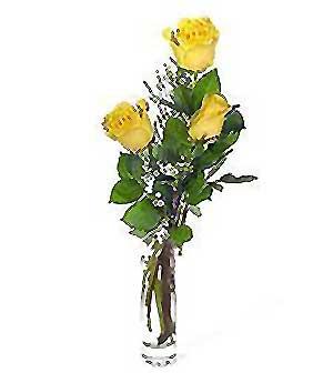 Hakkari çiçekçiler  3 adet kalite cam yada mika vazo gül