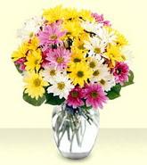 Hakkari çiçekçiler  mevsim çiçekleri mika yada cam vazo