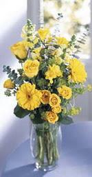 Hakkari çiçek siparişi vermek  sari güller ve gerbera cam yada mika vazo