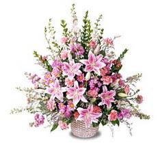 Hakkari çiçekçi mağazası  Tanzim mevsim çiçeklerinden çiçek modeli
