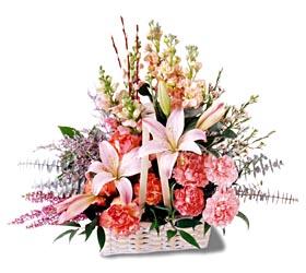 Hakkari çiçekçi mağazası  mevsim çiçekleri sepeti özel tanzim