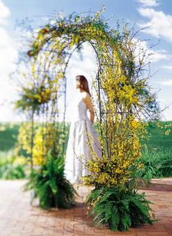 Hakkari çiçek siparişi sitesi  güller ve mevsim çiçegi