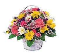 Hakkari çiçek satışı  mevsim çiçekleri sepeti özel