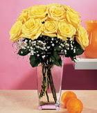 Hakkari çiçek siparişi sitesi  9 adet sari güllerden cam yada mika vazo
