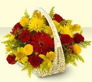 Hakkari uluslararası çiçek gönderme  sepette mevsim çiçekleri