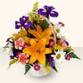 Hakkari uluslararası çiçek gönderme  sepet içinde karisik çiçekler