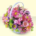 Hakkari güvenli kaliteli hızlı çiçek  bir sepet dolusu kir çiçegi  Hakkari İnternetten çiçek siparişi