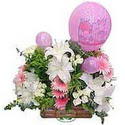 balon ve çiçeklerle tanzim  Hakkari çiçek siparişi sitesi