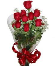 9 adet kaliteli kirmizi gül   Hakkari yurtiçi ve yurtdışı çiçek siparişi
