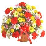 karisik renkli çiçek sepet   Hakkari İnternetten çiçek siparişi
