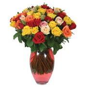 51 adet gül ve kaliteli vazo   Hakkari İnternetten çiçek siparişi