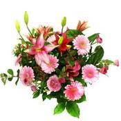 lilyum ve gerbera çiçekleri - çiçek seçimi -  Hakkari çiçek yolla