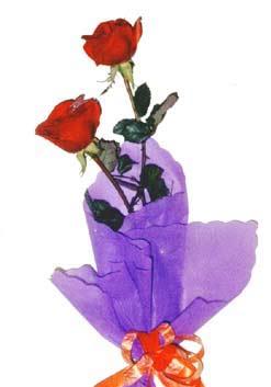 2  adet kirmizi gül buketi   Hakkari çiçek satışı