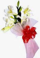 Hakkari çiçek satışı  ince vazoda gerbera ve ayi