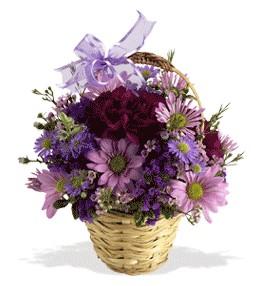Hakkari cicekciler , cicek siparisi  sepet içerisinde krizantem çiçekleri
