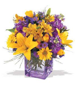 Hakkari çiçek servisi , çiçekçi adresleri  cam içerisinde kir çiçekleri demeti