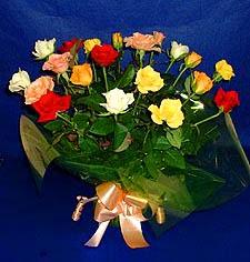 Hakkari ucuz çiçek gönder  13 adet karisik renkli güller