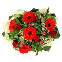 Hakkari çiçek , çiçekçi , çiçekçilik   5 adet kirmizi gül 5 adet gerbera demeti
