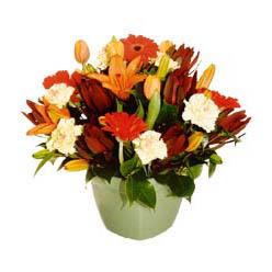 mevsim çiçeklerinden karma aranjman  Hakkari online çiçekçi , çiçek siparişi