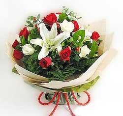 güller ve kazablanklardan görsel bir buket  Hakkari çiçek siparişi sitesi