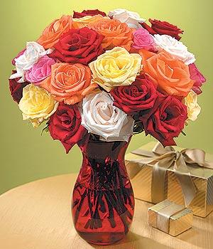 Hakkari 14 şubat sevgililer günü çiçek  13 adet renkli gül