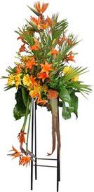 Hakkari çiçekçi mağazası  perförje tanzimi dügün nikah ve açilislara