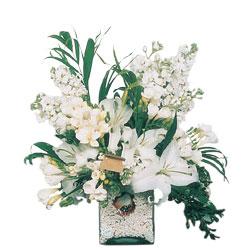 Hakkari çiçekçiler  sadece beyazlardan olusmus mevsim cam yada mika tanzim