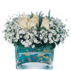 Hakkari hediye çiçek yolla  mika yada cam içerisinde 7 adet beyaz gül