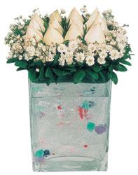 Hakkari hediye çiçek yolla  7 adet beyaz gül cam yada mika vazo tanzim