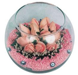 Hakkari çiçek siparişi sitesi  cam fanus içerisinde 10 adet gül