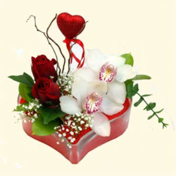 Hakkari anneler günü çiçek yolla  1 kandil orkide 5 adet kirmizi gül mika kalp