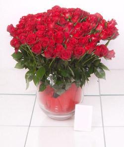 Hakkari online çiçek gönderme sipariş  101 adet kirmizi gül