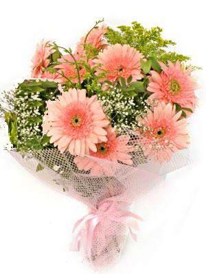 Hakkari çiçekçi telefonları  11 adet gerbera çiçegi buketi