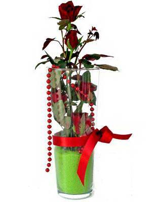Hakkari çiçek siparişi vermek  Cam yada mika içerisinde 9 adet kirmizi gül - sevdiklerinize özel