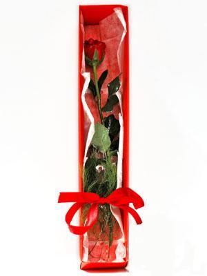 Hakkari güvenli kaliteli hızlı çiçek  1 adet kutuda gül