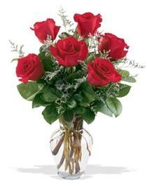 Hakkari İnternetten çiçek siparişi  7 adet kirmizi gül cam yada mika vazoda sevenlere