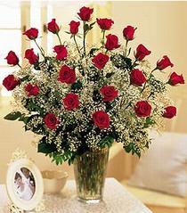 Hakkari çiçek satışı  özel günler için 12 adet kirmizi gül