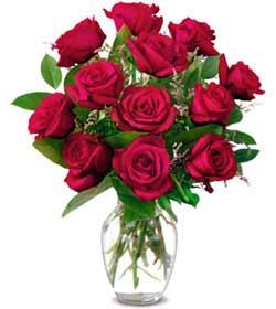 Hakkari çiçek siparişi vermek  1 düzine kirmizi gül sevenlere özel vazo gülleri