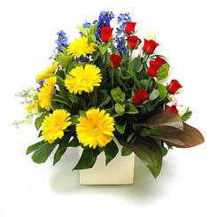 Hakkari çiçek siparişi vermek  9 adet gül ve kir çiçekleri cam yada mika vazoda