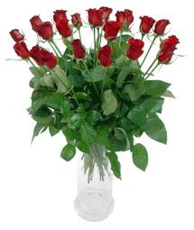 Hakkari çiçek gönderme  11 adet kimizi gülün ihtisami cam yada mika vazo modeli