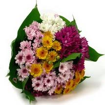 Hakkari çiçek gönderme  Karisik kir çiçekleri demeti herkeze